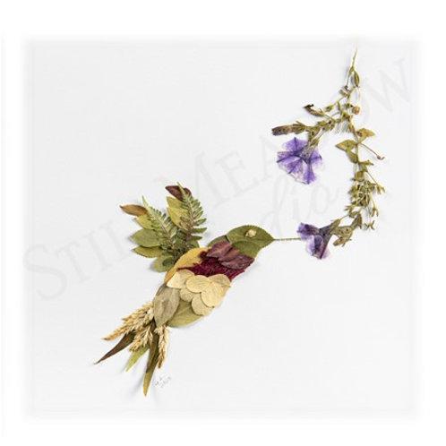 """Hummingbird"" Print"