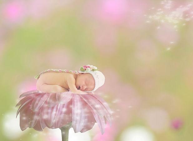 baby-1953385_1920.jpg