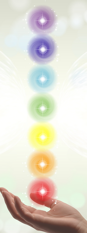 7 Chakras Root Chakra Sacral Chakra Solar Plexus Chakra Heart Chakra Throat Chakra Third Eye Chakra Crown Chakra