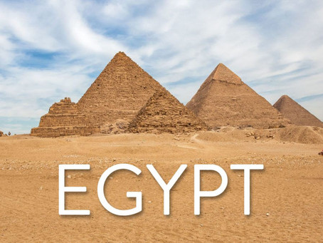 FBOs purchased in Egypt