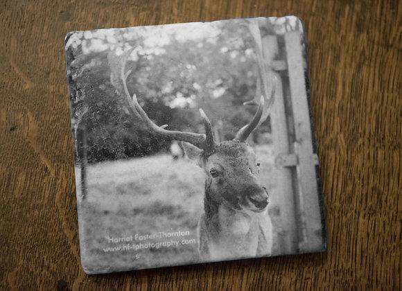 Marble Stone Coaster - Fallow Deer