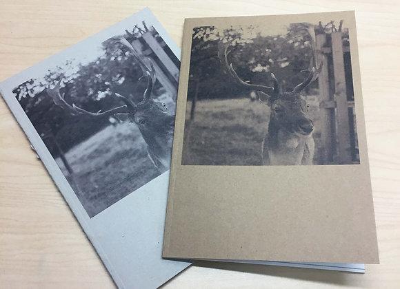 A5 Notebook - Fallow Deer Portrait