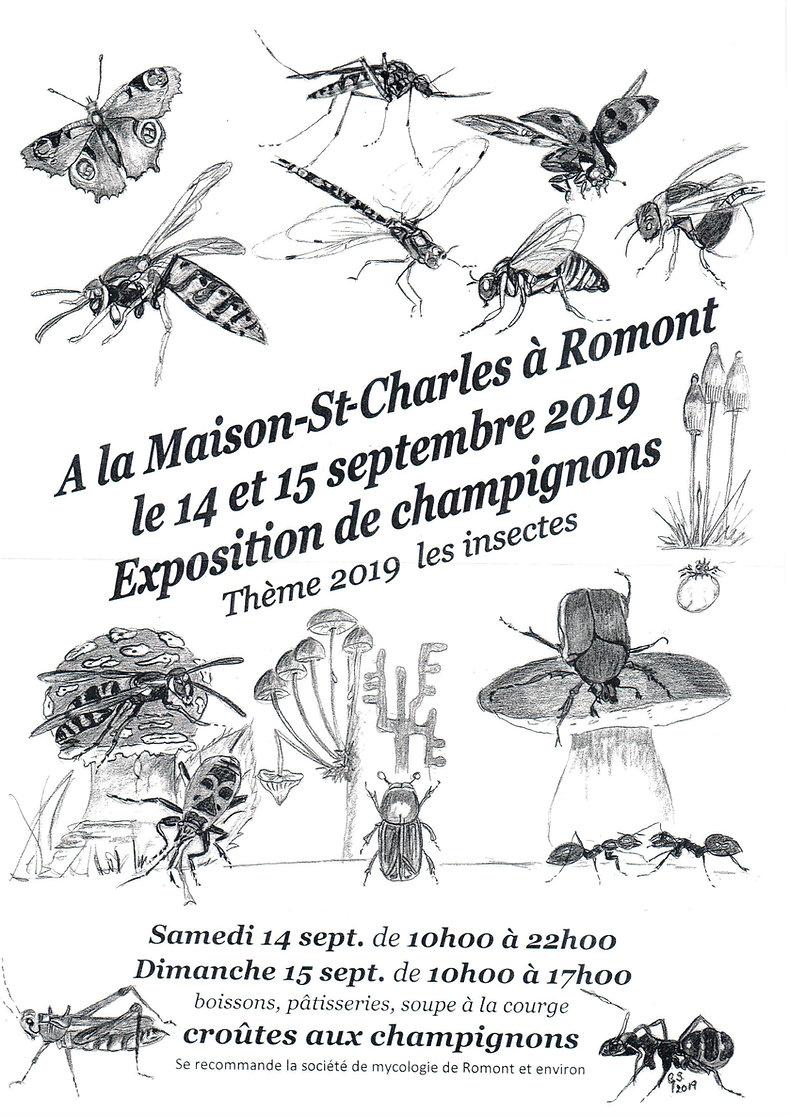 Exposition de champignons Romont 2019