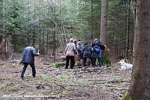 Cueilleurs de champignons