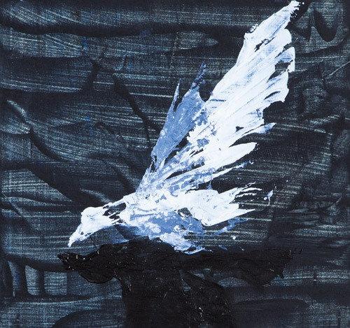 Jonathon Livingston Seagull IV