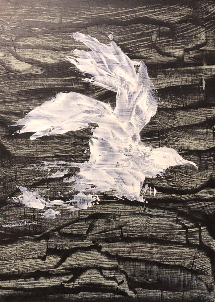 Jonathon Livingston Seagull II