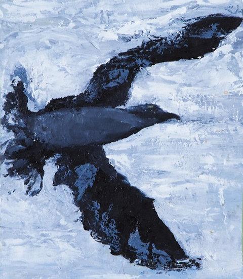 Jonathon Livingston Seagull V