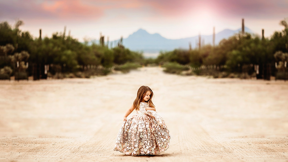 Tucson Family Photographer, Princess Mini