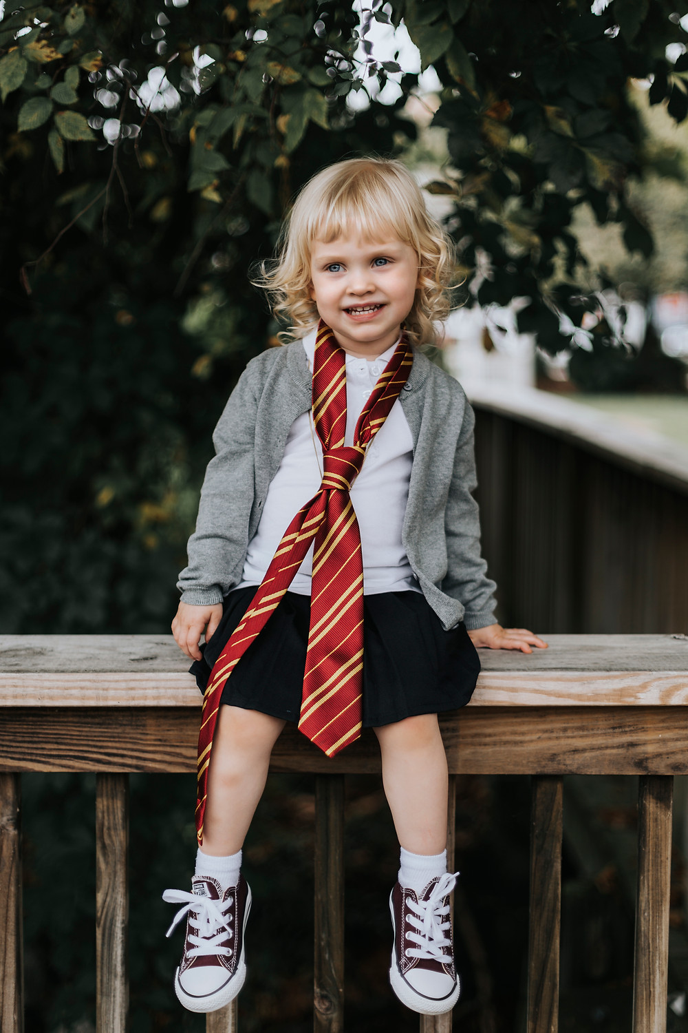 Harry Potter inspired family photos
