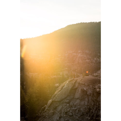 Tall Sierra Sunset