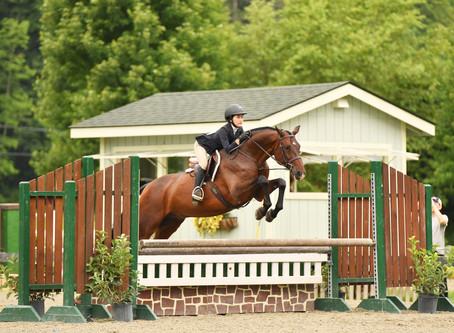 Summer of Flying Horses