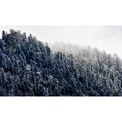 Mountain Frosting