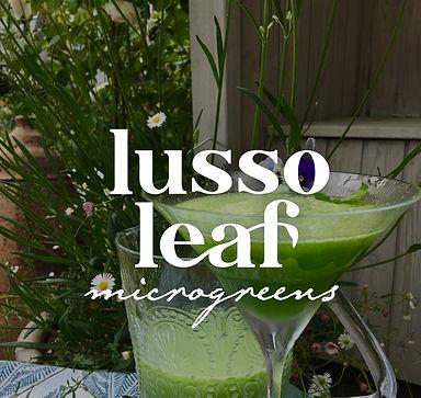 Lusso Leaf Visual