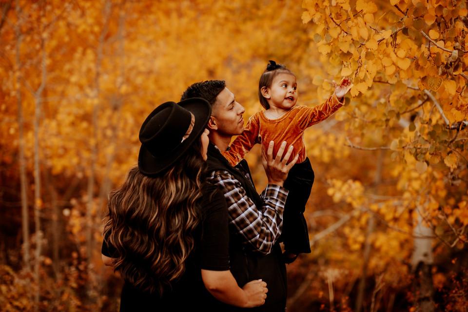 familyphotosjasminemalloimagery.jpg