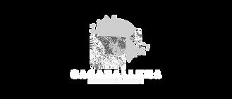 Logos aliados_ceec-18.png