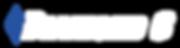 Diamond C Logo (white).png