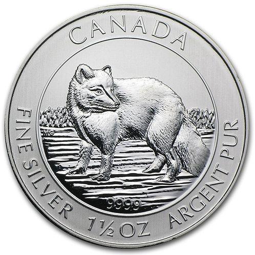 Silver Canadian Arctic Fox