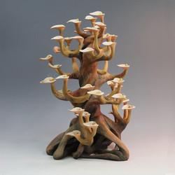 Bonnet Tree