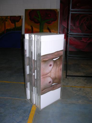 Foto-instalación Año 2005 Fotografía, acrílico, metal, cables Dimensiones variables Pieza Única Colección Beatriz Gil Moncada - Paris
