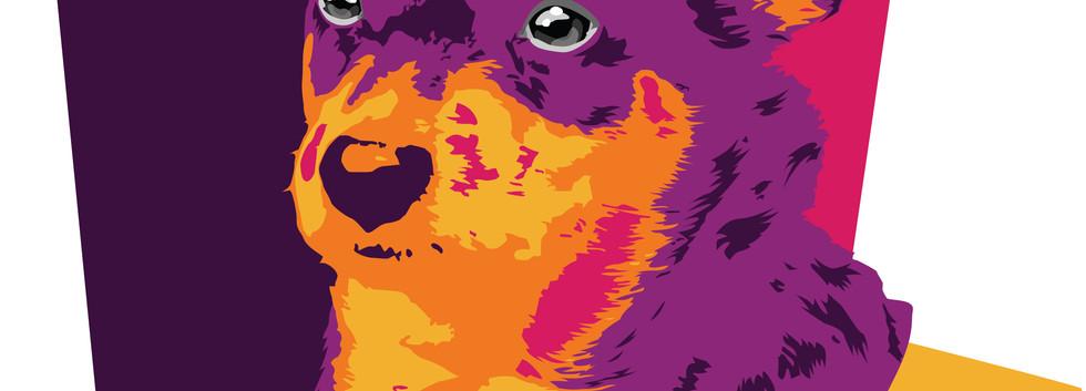 pop  art-1 יאנה ווסטריקוב שנה א',עיצוב מ