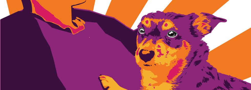pop  art 2 יאנה ווסטריקוב שנה א',עיצוב מ