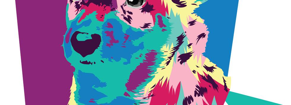 pop  art יאנה ווסטריקוב שנה א',עיצוב מדי