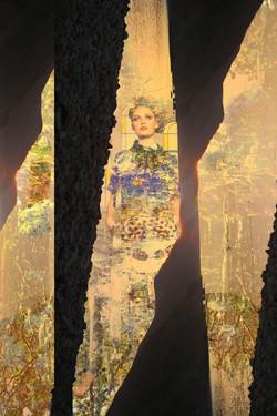 Inflorescence Artwork