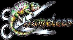Simmertal Friseur Chameleon