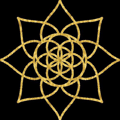 symbol_18%.png
