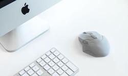 mouse_Zmorph.jpg