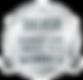2019 LearnX Silver Logo.png