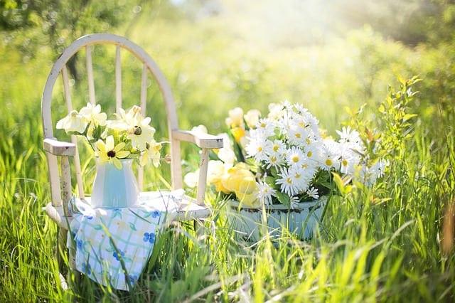 engrais naturel Azote et jardin