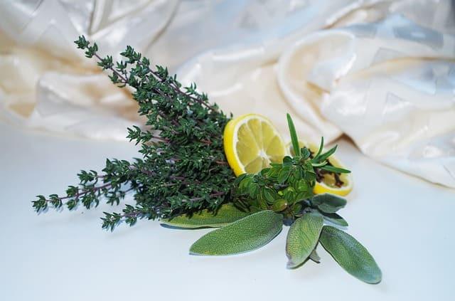 herbs, lemon, sage