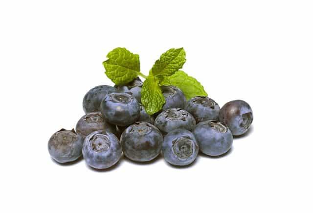 bleuets, myrtille, fruits