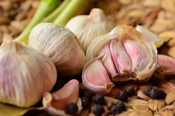 Garlic, a very powerful remedy for respiratory tract infections