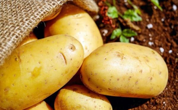 La pomme de terre, remède maison contre les infections oculaires