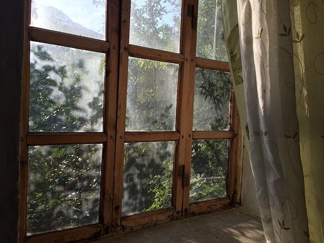 routine matinale, fenêtre, morning, réveil, nature, Yoga, méditation