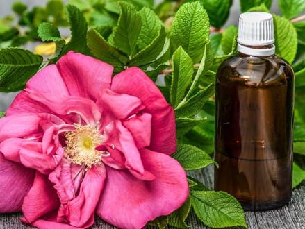 8 remèdes naturels pour détoxifier son foie