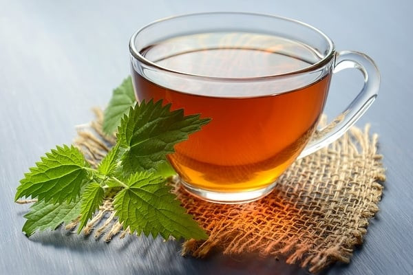 Nettle tea to relieve snoring