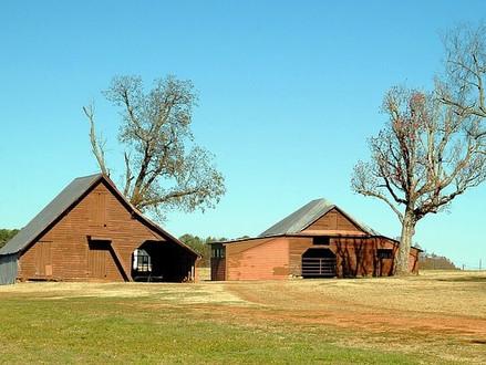 Construire sa maison ou cabane écologique