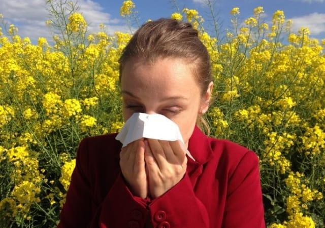 Les allergies, cause de l'asthme