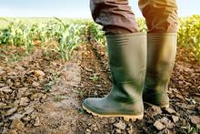Sem auxílio, agricultores acumulam prejuízos e pedem derrubada a vetos de Bolsonaro
