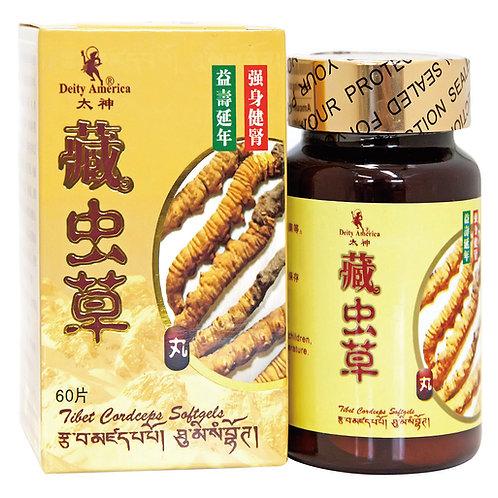 Tibet Cordecep Softgels (60 Softgel)