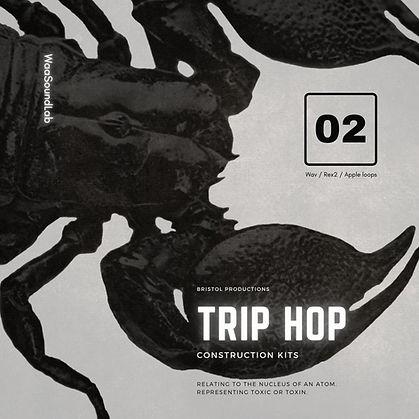 TRIP HOP2.jpg