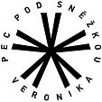 VER_Logo - web.jpg