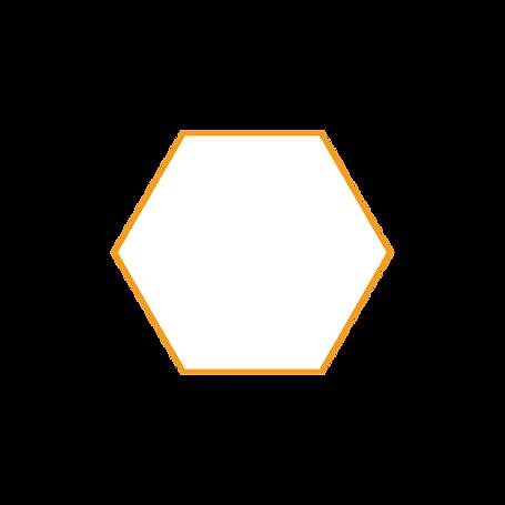 hex orange.png