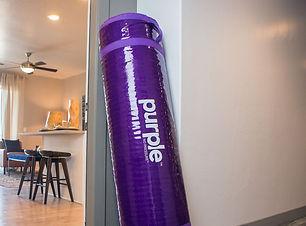 purple.jpeg
