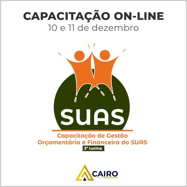 SUAS-3.jpg