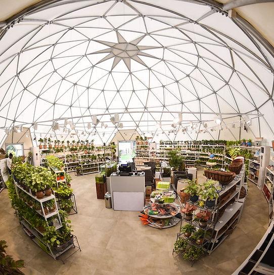 Geodesic Dome.jpeg