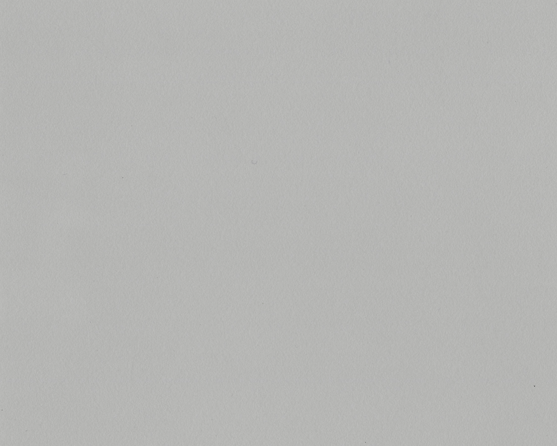 Light Grey - 003